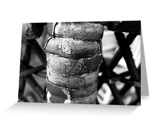 Wicker Spine Greeting Card