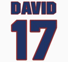 National football player David Anderson jersey 17 by imsport
