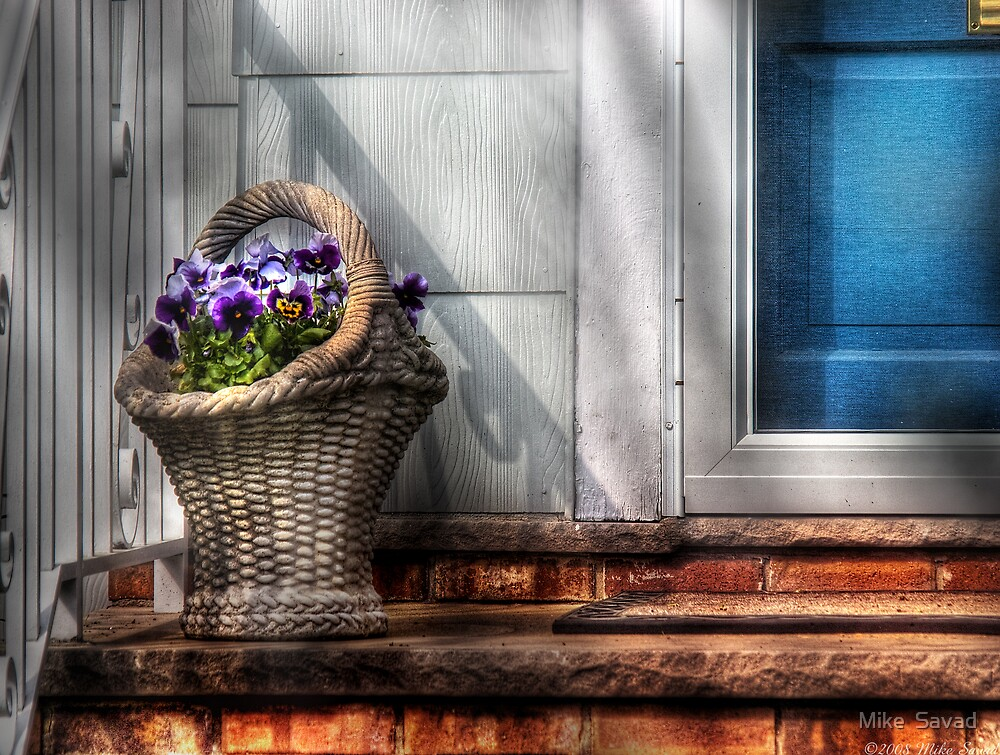 Basket of flowers by Mike  Savad
