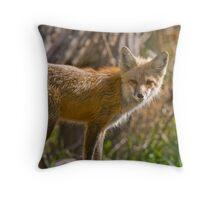 Rasberry Throw Pillow