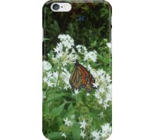 Orange Butterfly On White Flowers iPhone Case/Skin