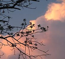 Storm clouds by ANibbe