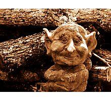 Wood Gnome. Photographic Print