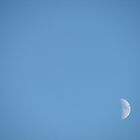 moon by ANibbe
