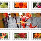 Flower stamp collage by robert murray