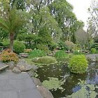 Fitzroy Gardens: Pond by Colin  Ewington