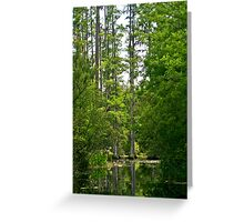 Cypress Lagoon Greeting Card