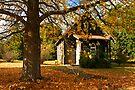 Cann River Church by Darren Stones