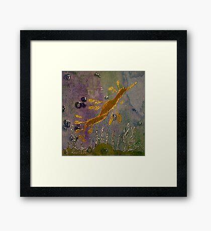 Sea Dragon Framed Print