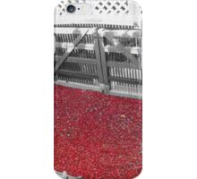 Poppys under a bridge iPhone Case/Skin