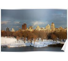 Central Park View Poster