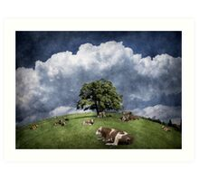15 cows on the meadow Art Print