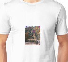 Flaming Foliage in Fairfax Unisex T-Shirt