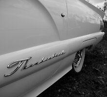 '60 T-Bird by Melanie PATRICK
