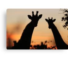 Giraffe Sunset - African Wildlife - Peaceful Tranquility Canvas Print