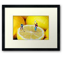 Golf Game On Lemons Framed Print