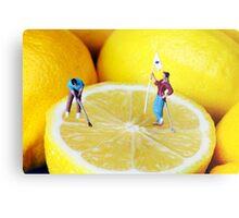 Golf Game On Lemons Metal Print