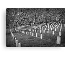 For Our Nation Canvas Print
