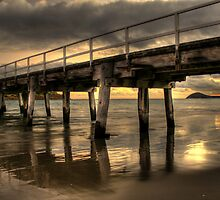 Golden Causeway by Steve Chapple