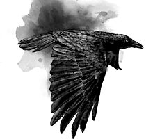 Crow by Mike Rigby