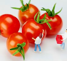 Chefs And Cherry Tomatoes by Paul Ge