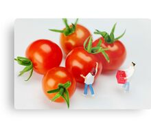 Chefs And Cherry Tomatoes Metal Print