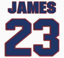 National football player James Marshall jersey 23 by imsport