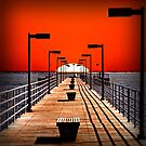 A Pier on The Thumb by DJ Florek