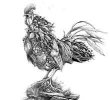 Earth Rooster by Mike Rigby