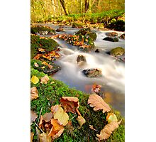 Islands in the stream Photographic Print