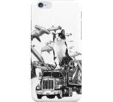 Kitty iPhone Case/Skin