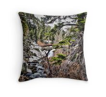 First sign of spring at Eagle Falls Throw Pillow