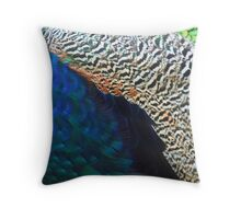 Earth Finder Throw Pillow