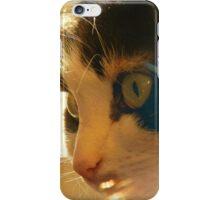 FURRY FELINE iPhone Case/Skin