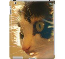 FURRY FELINE iPad Case/Skin