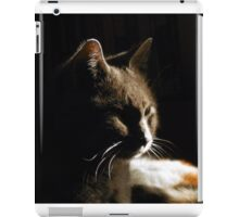 Silverwolf Noir iPad Case/Skin