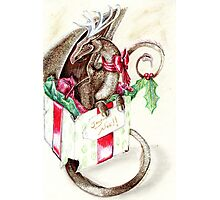 the little red nose dragon Photographic Print