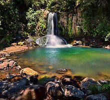 Waiau Falls Bright Water by Ken Wright