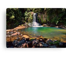 Waiau Falls Bright Water Canvas Print