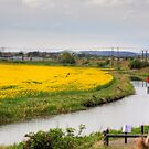 Union Canal near Broxburn by Tom Gomez
