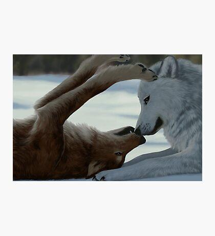 Sweet wolf couple Photographic Print