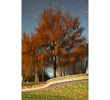 Greenwich Park Reflection Photographic Print