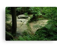 Woods and Rocks Canvas Print