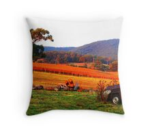 Gruyere serenity Throw Pillow