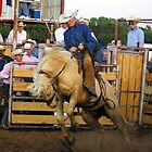 Out of the chutes by courier