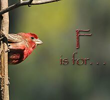 F is for . . . by Bonnie T.  Barry