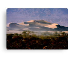 Sculptured  Dunes Canvas Print