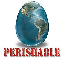 Earth-Perishable Photographic Print