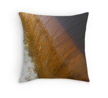 Rum River Dam Throw Pillow