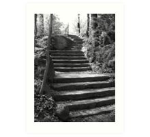 Steps into the past Art Print